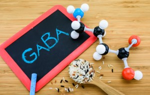 gaba deficiency