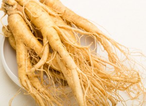 where to find ginseng