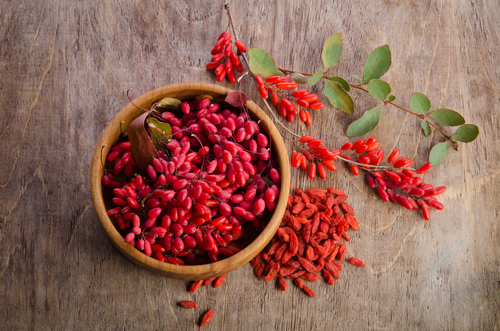 Berberine Side Effects, Safety Warnings, Drug Interactions ... - photo #48