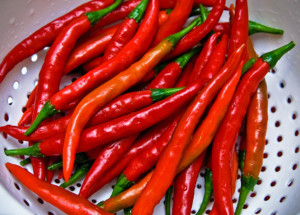 Pure Capsaicin Extract